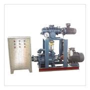罗茨泵组(水环)