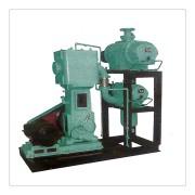 WL-100无油立式真空泵