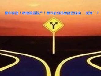 """稳中探涨!新增装置投产!春节后有机硅能否延续 """"反弹""""?最新走势预测!"""